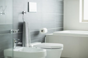 Bidets are rising in popularity in the U.S. because high tech toilets often come with a bidet feature.